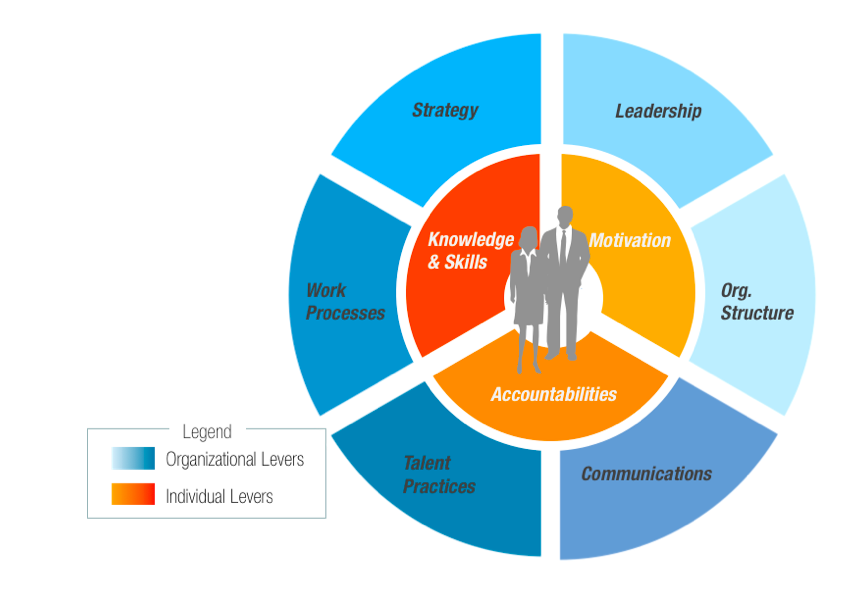 leadership and organization change Successful organizational change stagl presents six roles of a leader during change 5 steps for a leader to bring about organizational change - kay leadership.